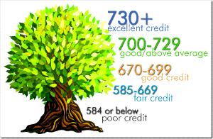 credit score tree